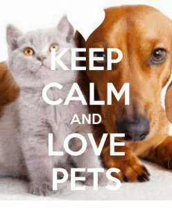 animal smart pet sitter