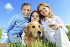 animal smart pet franchise